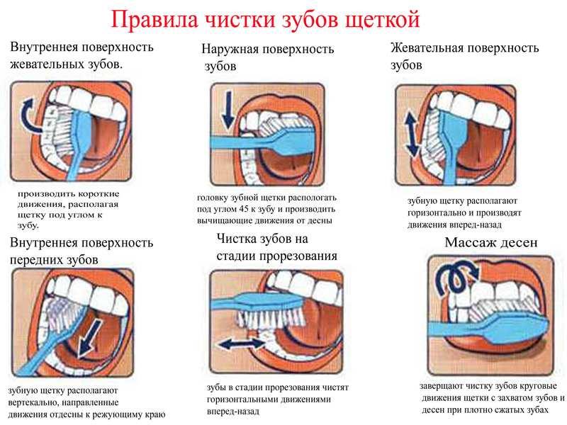 Как правильно чистить зубы схема